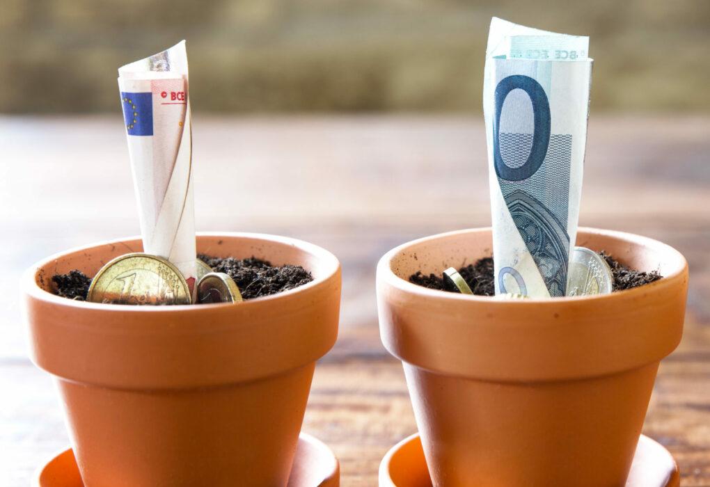 Haushaltsplanung: Geld steckt als Symbol einer Anlage in Blumentöpfen.